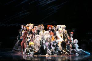 個性豊かな24匹の猫たちが生きざまを歌い上げる 撮影者:堀勝志古