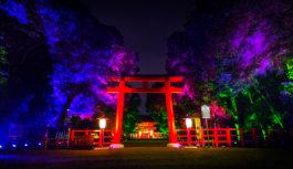 チームラボが、世界遺産 下鴨神社を 神秘的な光の空間に 8月31日(水)まで