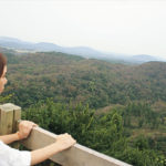 【つぎ、どこ行こ?】韓国・済州島を歩く ―済州市編―