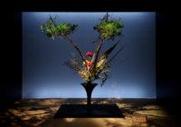 「いけばなの根源池坊展 大阪花展」 3月15日(土)~20日(日)大阪髙島屋で 「花の力」テーマに約450作品