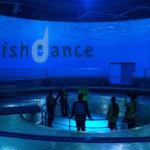 魚の生態をダイナミックに体験 城崎マリンワールドに新施設