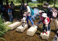 こども北摂里山探検隊 参加者募集! 6月17日(土)に伊丹市の昆陽池公園・昆虫館で開催