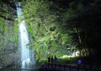箕面大滝が期間限定でライトアップ 光と水が織りなす幻想的な世界