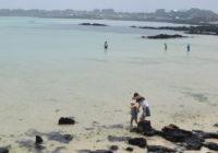 今、済州島がアツい?!現地調査でわかった5つの理由