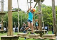自然とマンガ&メディアアートが遊ぶ森? 「ニジゲンノモリ」 淡路島にオープン