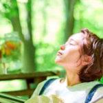 """""""大人の夏休み""""におすすめ! <br />六甲高山植物園の「ブナカフェ」に注目"""