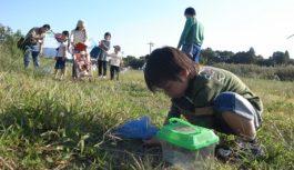 10月は深北緑地・ちはや園地で生物多様性を知るプログラム~大阪府の府政学習会~