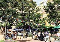 オリーブの樹で街に新たなにぎわいを ハーバーランドの神戸煉瓦倉庫