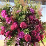 淀屋橋オドナが開業10周年 花で彩り、買い物券のプレゼントも