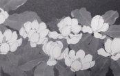 白黒で描くかれんな姿 片山治之野の花展 梅田と川西で
