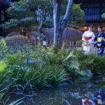 大阪の夜をホタル観賞とディナービュッフェで満喫<br />開業60周年の太閤園 恒例イベントがスタート