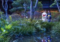 大阪の夜をホタル観賞とディナービュッフェで満喫開業60周年の太閤園 恒例イベントがスタート