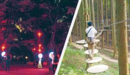 大人も楽しい!夏の森あそび六甲山【フォレスト アドベンチャー】大阪城公園【サクヤルミナ】