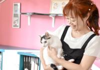 シニアの飼い主の悩みを支援するサービスを紹介するセミナー8/17(土)大阪で~NPO法人ペットライフネット~