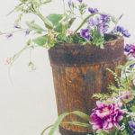 秋色の花に心を託して新たな一歩<br/>第46回深雪アートフラワー展