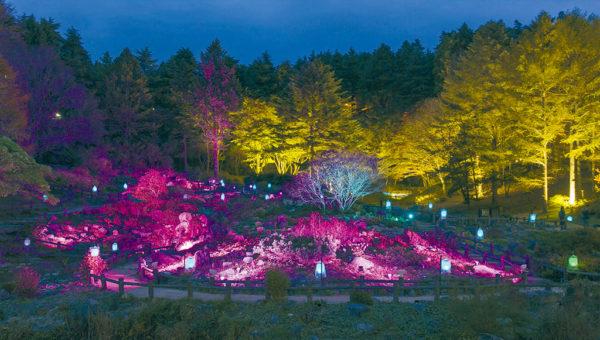 髙橋匡太「Glow with Night Garden Project in Rokko 提灯行列ランドスケープ」2018年