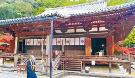 冬の美術館やカフェ巡りはいかが?奈良市西部で初の観光キャンペーン