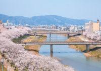 福井の桜 3月下旬ごろから見ごろに 戦国の栄華 一乗谷にも足延ばして