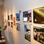 ひょうご北摂ライフ写真展<br />27~29日 伊丹のギャラリーで 地域の豊かな暮らしが24点に