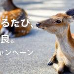 奈良の旅気分 自宅で楽しんで<br />市観光協会がWEBでキャンペーン 鹿で遊べる企画多彩に