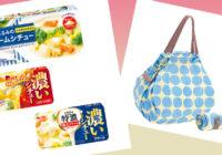【プレゼント】「栗原はるみのクリームシチュー」「Shupatto コンパクトバッグ」